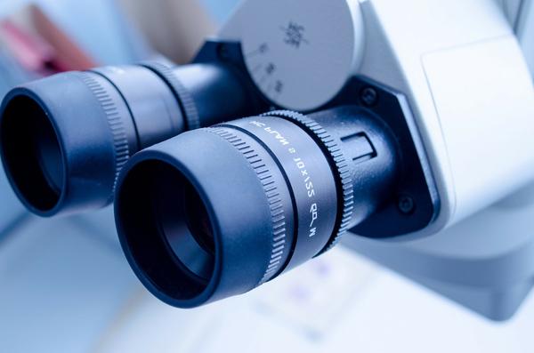 microscopio2